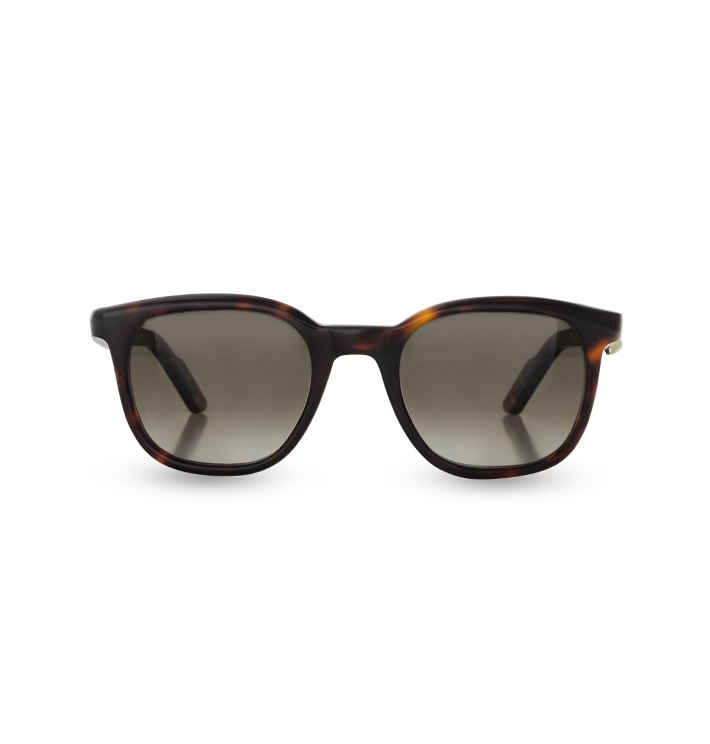 Front view of Overfinch Sunglasses in Tortoiseshell